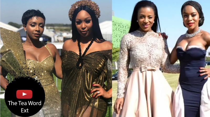 SA Celebs Who Went From Best Friends To Enemies-the tea world ext